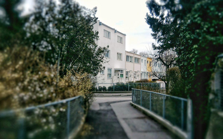 Mittig in hellrosa die mit nur je 33 m² kleinsten Häuser der Wiener Werkbundsiedlung von Walter Loos, Foto (c) Cajetan Jacob - kekinwien.at
