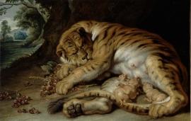 Peter Paul Rubens (Werkstatt), Säugende Tigerin, Öl auf Leinwand © Gemäldegalerie der Akademie der bildenden Künste Wien