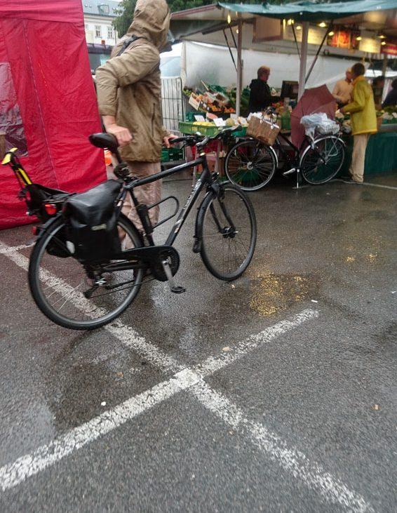 kek unterwegs auf dem Markt, Bild (c) Mischa Reska - kekinwien.at