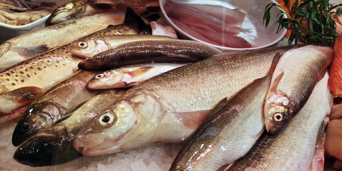 Frischfisch auf dem Markt, Bild (c) Mischa Reska - kekinwien.at