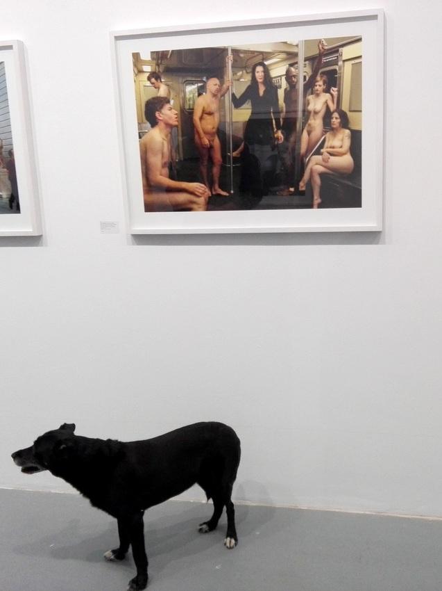 Hund unter Abramović, Marina Abramović in der U-Bahn inmitten nackter Passagiere, aus der Serie 'Portraits', von Martin Schoeller, Bild (c) Claudia Busser - kekinwien.at