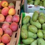 2erlei-mango