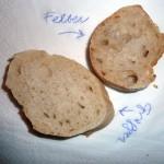 Felber und Gragger im Test