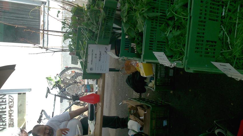 GIN auf dem Yppenmarkt - kekinwien.at