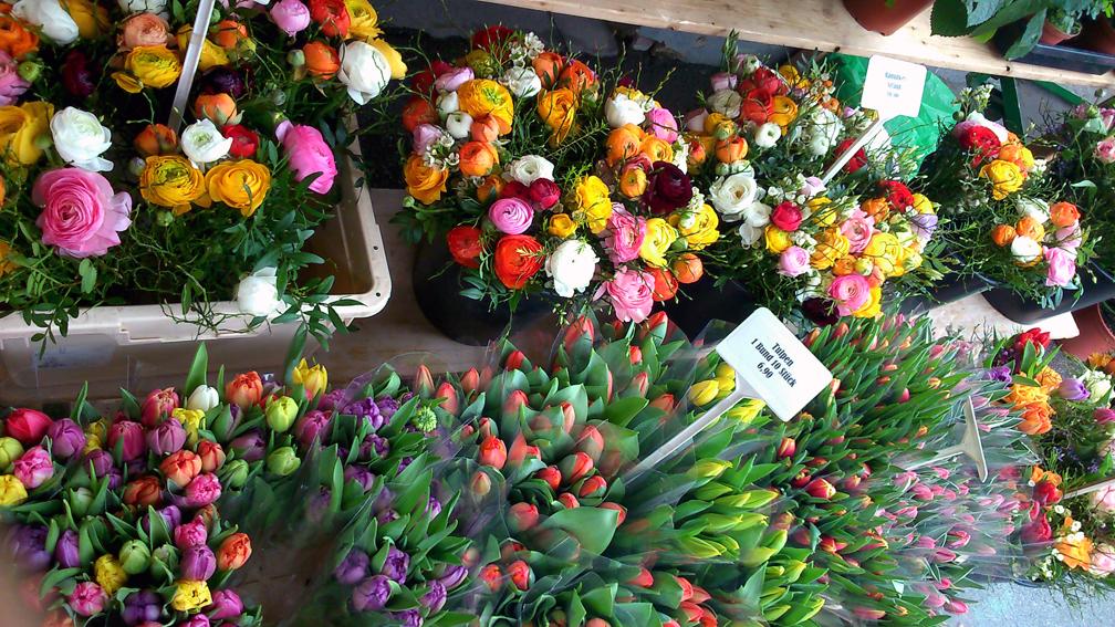 Blumen auf dem Markt - kekinwien.at