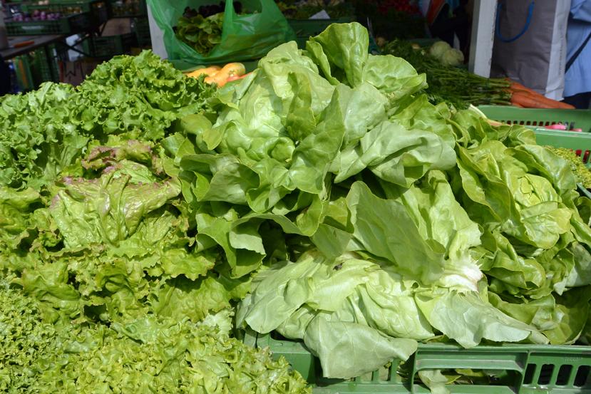 Salat, Foto (c) MIscha Reska - kekinwien.at