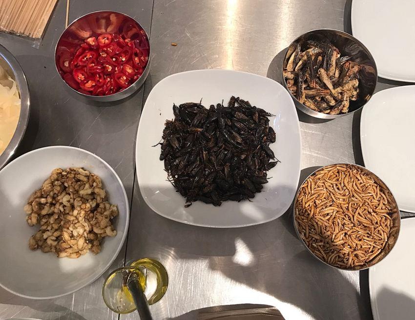Mise en Place mit Insekten für das Dinner, Bild (c) Barbara Hackl - kekinwien.at