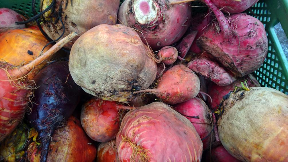 Auf dem Markt im Winter, der Naschmarkt - kekinwien.at