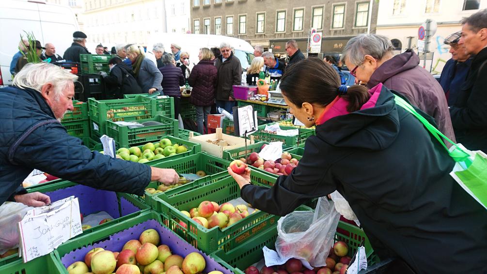 Apfelkenner_innen, Kundi_nnen beim Auswählen von Äpfeln auf dem Naschmarkt, Bild (c) Mischa Reska - kekinwien.at