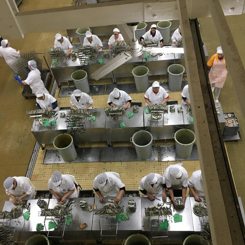 Blick von oben in der Fabrik bzw Manufaktur für Nuri, Bild (c) Christof Habres - kekinwien.at