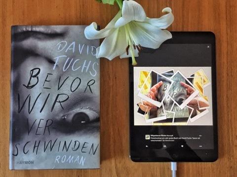 Bevor wir verschwinden, David Fuchs, Roman, Bild (c) Alexandra Wögerbauer-Flicker - kekinwien.at
