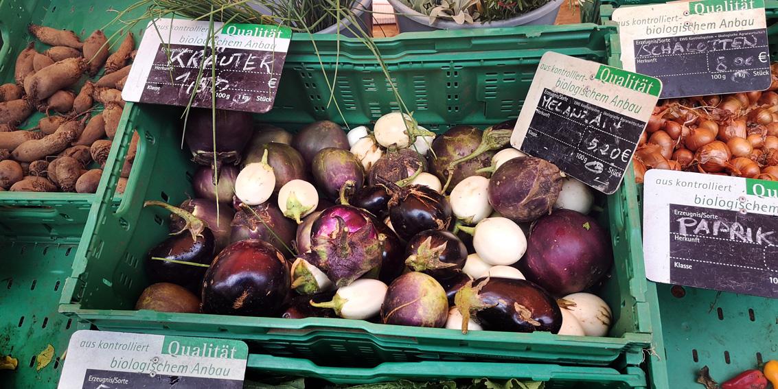 Melanzani, Vielfalt auf dem Markt im Herbst, Bild (c) Mischa Reska - kekinwien.at