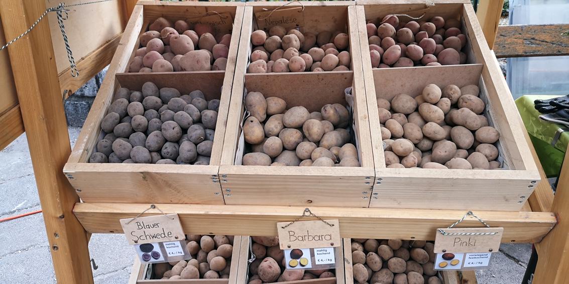 Unterschätzt mir die Kartoffel nicht! Sortenvielfalt auf dem Markt, Bild (c) Mischa Reska - kekinwien.at